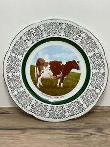 """Fine Vintage Mid 20th Century 'The Ayrshire Dairy Cow"""" Porcelain Plate Charger"""