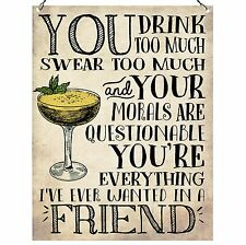 You drink too Much Swear Too Much Friendship Quote Funny Gift Metal Sign 15x20cm