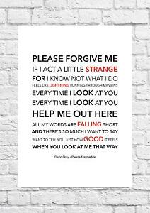 David Gray - Please Forgive Me - Song Lyric Art Poster - A4 Size
