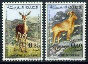 Morocco 1972. Artiodactyl animals. MNH