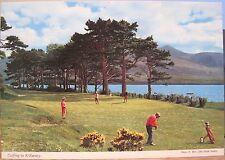 Irish Postcard GOLFING IN KILLARNEY Lakes Golf Ireland R Beer John Hinde 2/393