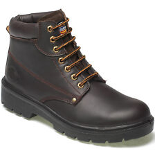 DICKIES ANTRIM SAFETY STEEL TOE CAP & MS WORK BOOTS FA23333 BROWN SIZE UK 6-12