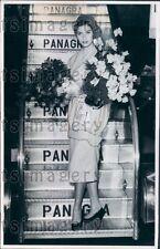 1958 Gorgeous Miss Universe Gladys Zender of Peru Press Photo