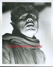 "Werewolf Of London 8x10"" Photo #K8906"