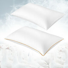 Soft Goose Down Feather Bed Home Sleeping Pillow Gusseted Alternative Queen Size