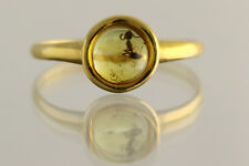 Fossil Insect Genuine BALTIC AMBER Gold Plated Silver Ring 6.5 180606-6