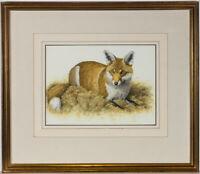 Simon Turvey SWLA (b.1957) - Signed 20th Century Gouache, The Fox
