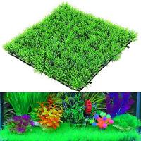 Eau artificielle aquatique herbe verte plante pelouse aquarium paysag