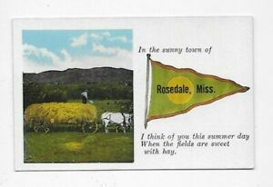 Vintage Pennant Postcard Rosedale MS Salesman Sample 2512