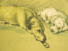Lucy Dawson Book Cover WOLFHOUND and SEALYHAM (4) 1946 Vintage Dog Print Matted