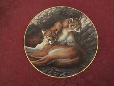 COUGAR collector plate JAMES MEGER Hamilton Collection WILD CAT