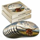 8 x Boxed Round Coasters - Texas Longhorn Cow American #14569