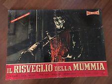 FOTOBUSTA,IL RISVEGLIO DELLA MUMMIA La momia azteca 1960,Harrison, Miller Horror