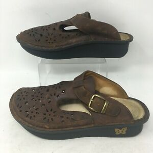 Alegria Breezy Tawny Clog Mule Slip On Laser Cut Leather Buckle Brown Womens 37