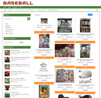 FULLY STOCKED BASEBALL GEAR WEBSITE WITH 1 YEARS HOSTING & NEW DOMAIN