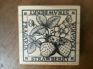 STRAWBERRY FRUIT SCIENTIFIC NAME FRAGARIA PSX G-1301 Wood Mounted Rubber Stamp