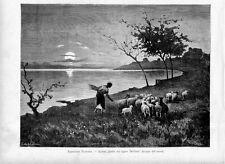 Stampa antica GREGGE di PECORE AL TRAMONTO con contadina Delleani 1881 Old print