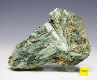 Actinolite / Tremolite Fibrous Crystal Cluster Mineral Specimen -  108mm  320g