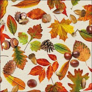 4 x Single Paper Table Napkin/3-Ply/33cm/Decoupage/Autumn/ Leaves/Cones/Acorns