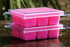 100hr 6pk PINEAPPLE FRANGIPANI Organic ECO SOY WAX CLAM CANDLE MELTS SMALL GIFTS