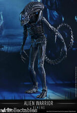 Sideshow Hot Toys Movie Masterpiece-xenomorfo Alien Warrior personaje-nuevo/en el embalaje original