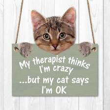 My The Thinks I M Crazy Funny Cat Sign Wooden Effect Plaque Joke