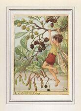 Fiore Fate Vintage Stampa: la fata Alder