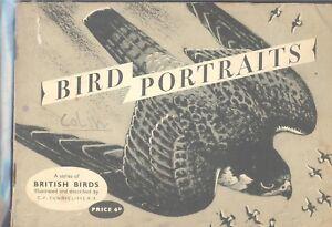 Brooke Bond - Bird Portraits - Set in album, solid border to card space