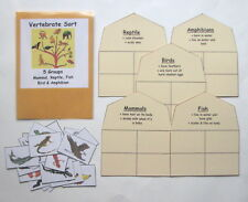 Teacher Made Science Center Educational Learning Resource Game Vertebrate Sort
