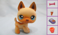 Littlest Pet Shop Dog German Shepherd 212 and Free Accessory Authentic