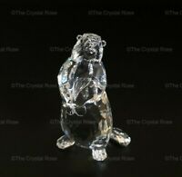 RARE Retired Swarovski Crystal Marmot Squirrel Groundhog 289305 Mint Boxed