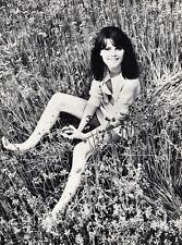 1966 Vintage 16x20 Sexy RISQUE FEMALE FASHION Woman Carla Moliere WINGATE PAINE