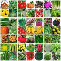 VARIETIES vegetable Seeds Heirloom retail package Top Quality 061-120