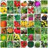 VARIETIES vegetable Seeds Heirloom retail package Top Quality 061-120