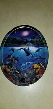 The Bradford Exchange Rainbow Sea 1996 First Issue Above & Below Oval Plate