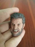 1/6 Scale Angry Wolverine Head Sculpt Model Fit 12inch Male Action Figure Body