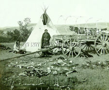 ANTIQUE REPRODUCTION 8X10 PHOTO PLAINS INDIAN CAMP > TEEPEE HIDES DRYING WAGON A
