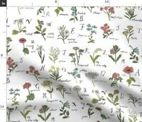 Abc Alphabet Botanical Wildflowers Flowers Nature Spoonflower Fabric by the Yard