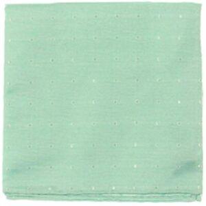Ryan Seacrest Distinction Men's Burgos Silk Polka Dot Pocket Square (Green)