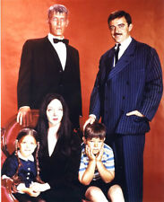 Addams Family, The Poster 24x36