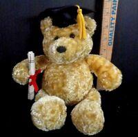 Graduation Tan Talking Bear Diploma Hat Dandee Plush Stuffed 3 Different Phrases