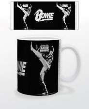 DAVID BOWIE THE MAN WHO SOLD 11 OZ SINGER ARTIST MUSICIAN ACTOR SONGWRITER