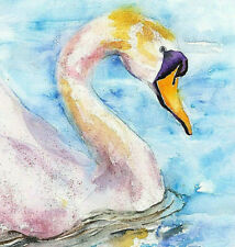 Limited Edition Print of SWAN watercolour by HELEN APRIL ROSE   506