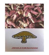 Red mushroom Russula high grade dried 237 grams