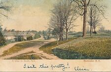 ROCHESTER NY – South Park – udb – 1905