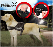 Gold Panda Design-New 3 Color Cozy Firm Soft Thicken Reflective Dog Harness