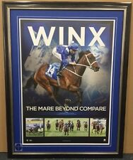 Winx The mare Beyond Compare Premium Framed