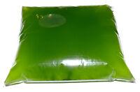 0,4L Chlorella vulgaris Starterkultur, Phytoplankton Züchten, Algen Lebendfutter