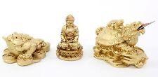 Set of 3~Fengshui Gold Buddha Money Frog Dragon Turtle Home Decor Gift