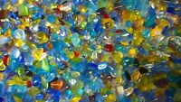 300pcs≈1/2Lb Beach Sea Glass Beads Various for Jewelry Making Decor by Linen Bag
